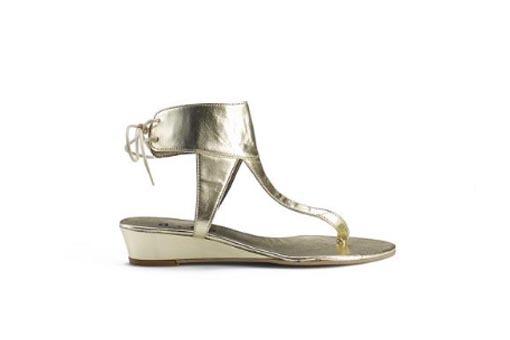 Discoc_shoe_2