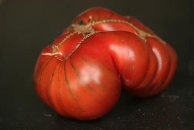 20070919_whole_tomato003